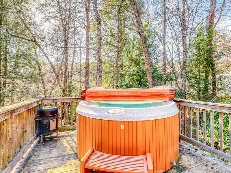 Lovely dog-friendly cabin w/ wood-burning stove, private hot tub, & free WiFi!, vacation rental in Epworth