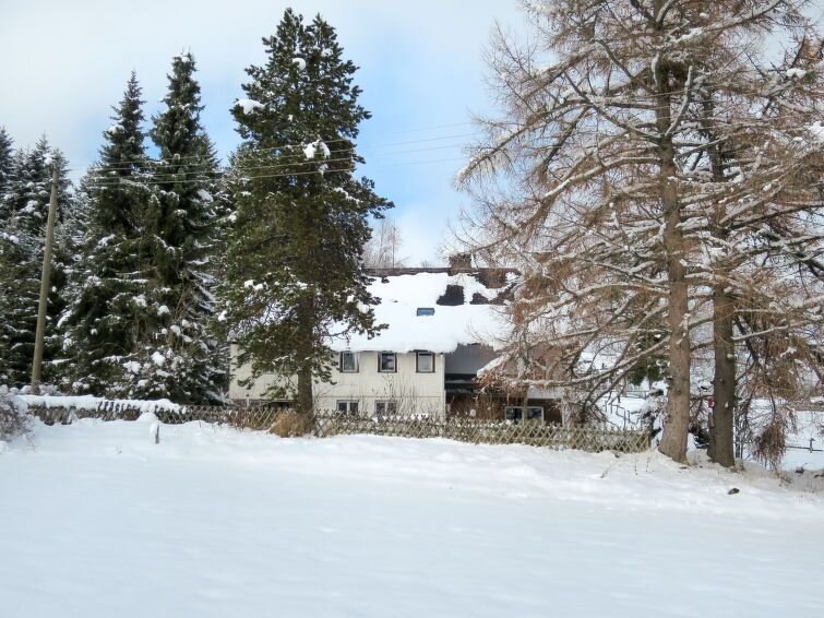 Apartment Blechnerhof  in Feldberg - Falkau, Black Forest - 6 persons, 2 bedroo, location de vacances à Feldberg