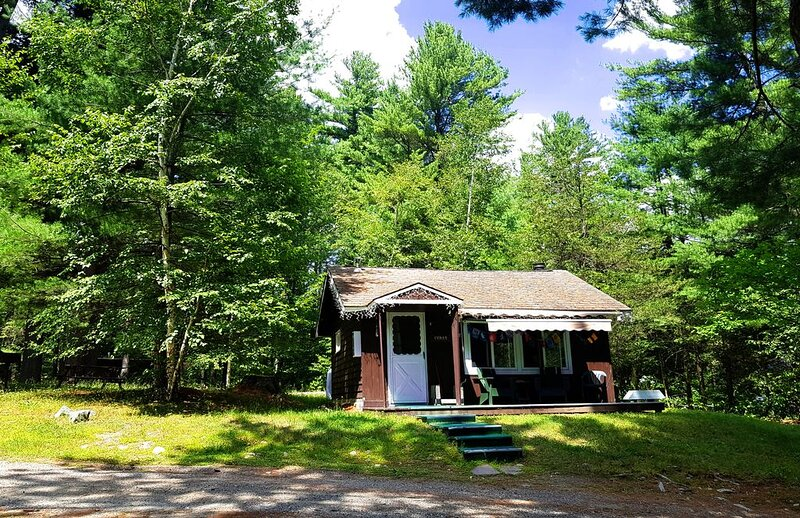 Family Chalet with Fireplace under Pine trees, holiday rental in Wilmington