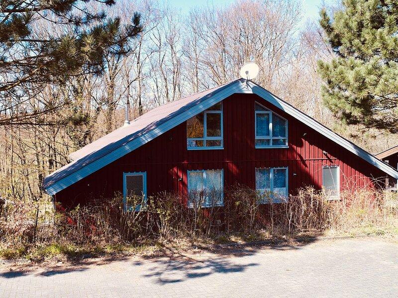 Komfort-Ferienhaus - Wandern, Sauna, Natur, Wald, Erholung #51, holiday rental in Heessen