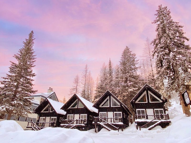 Black Bear Cabin #3 2 BR 2 Bath Cabin - sleeps up to 6, holiday rental in Whitefish