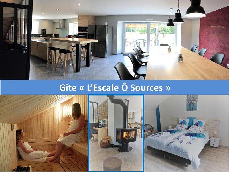 Grand gîte haut de gamme 8 à 12 pers. avec sauna, holiday rental in Bains-les-Bains