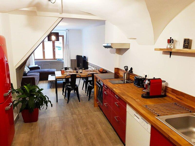 NOUVEAU !  Beau duplex tout confort à Faverges à seulement 10mn du lac d'Annecy, location de vacances à Faverges