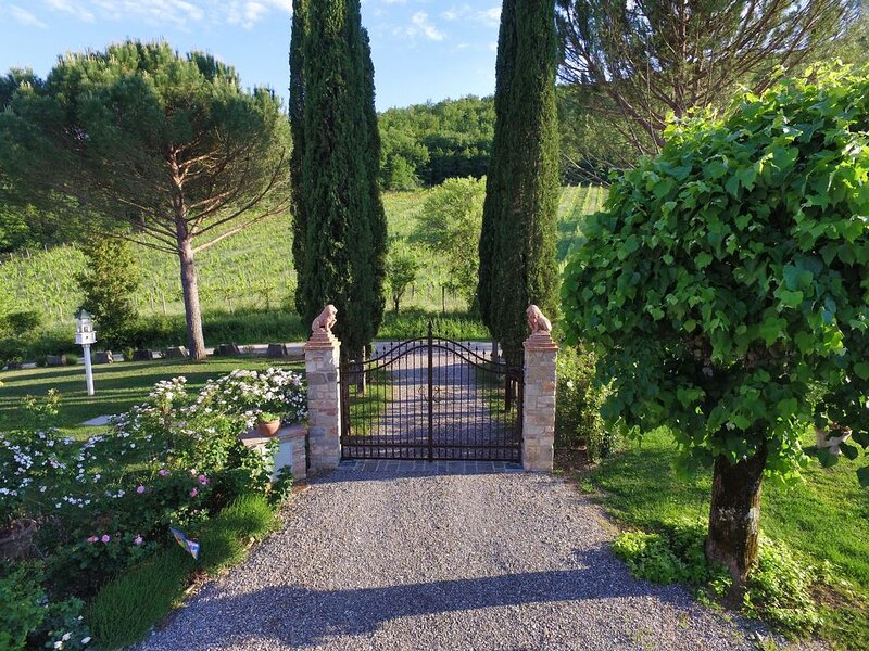 Villa San Piero: Perfect Vacation in Chianti with  Pool, Panorama, Privacy, holiday rental in Lucarelli