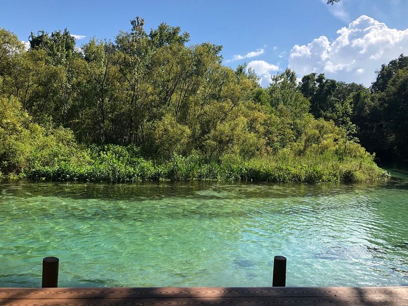Weeki Wachee MAIN RIVER, holiday rental in Spring Hill