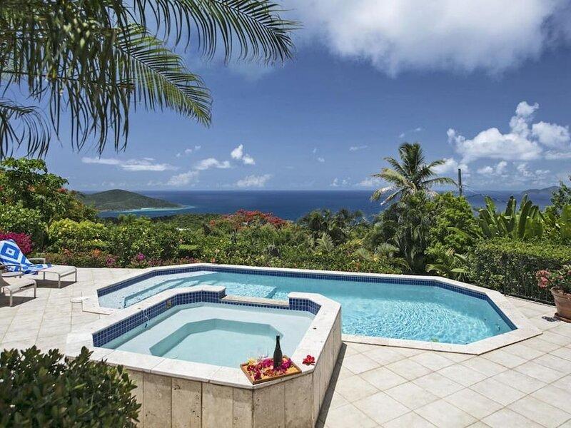 The large pool deck overlooking the Atlantic Ocean