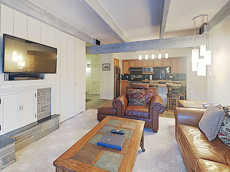Ski in Ski out Snowmass Village Timberline Condominiums 1 Bedroom Unit C1C, holiday rental in Marble
