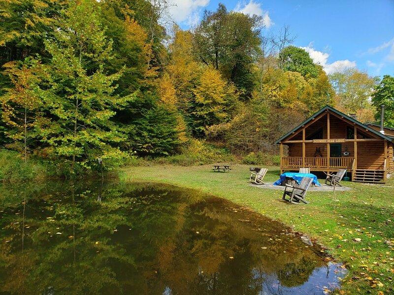 Cozy Long Eddy Cabin w/ Fire Pit + Game Room!, vacation rental in North Branch