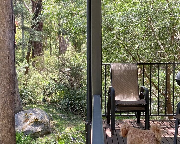 Cootamundra Cottages- BOROKA*Dog friendly (conditions apply), Ferienwohnung in Halls Gap