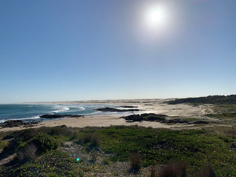 Ocean Breeze Close to Birubi Beach, vacation rental in Salt Ash
