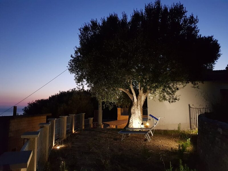 Appartamento in villa con giardino vista mare e parcheggio, location de vacances à Marina di Pisciotta
