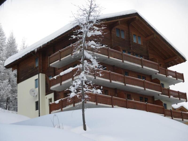 Ferienwohnung Bellwald für 4 Personen mit 2 Schlafzimmern - Ferienwohnung, location de vacances à Bellwald
