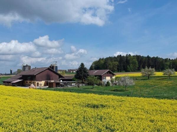 Ferienwohnung Dinhard für 2 - 5 Personen mit 1 Schlafzimmer - Ferienwohnung in B, holiday rental in Neuhausen am Rheinfall