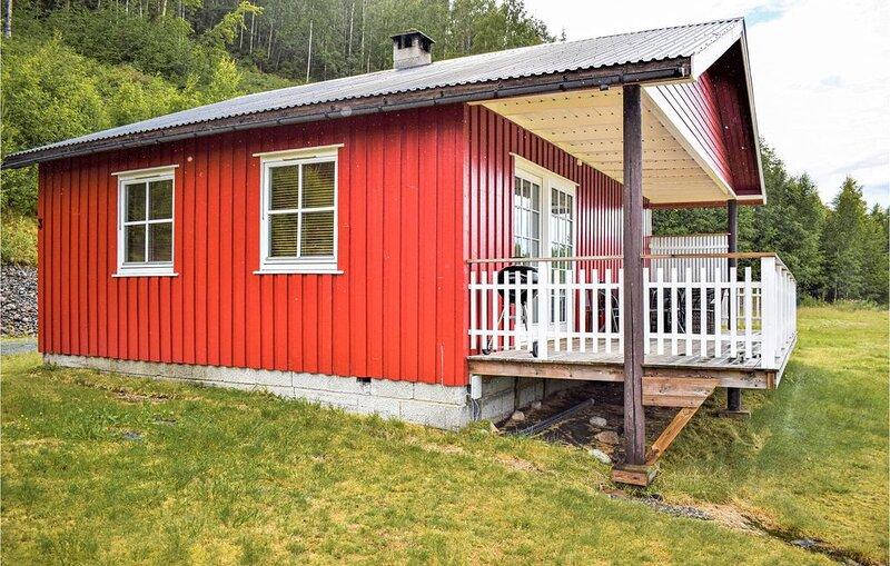2 Zimmer Unterkunft in Vrådal, holiday rental in Kviteseid Municipality