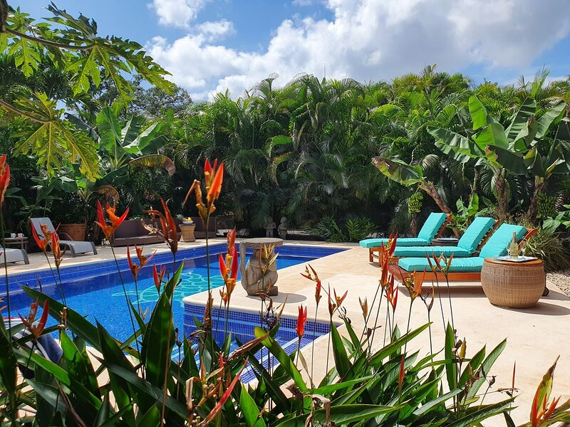 THE GEM OF ATENAS: EXQUISITE HOME on 18 acres of TROPICAL PARADISE, aluguéis de temporada em San Isidro