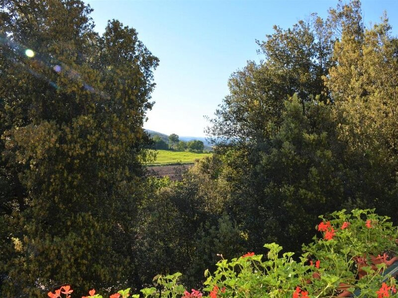 Bb Il Leccio , Umbria, vacation rental in San Gemini