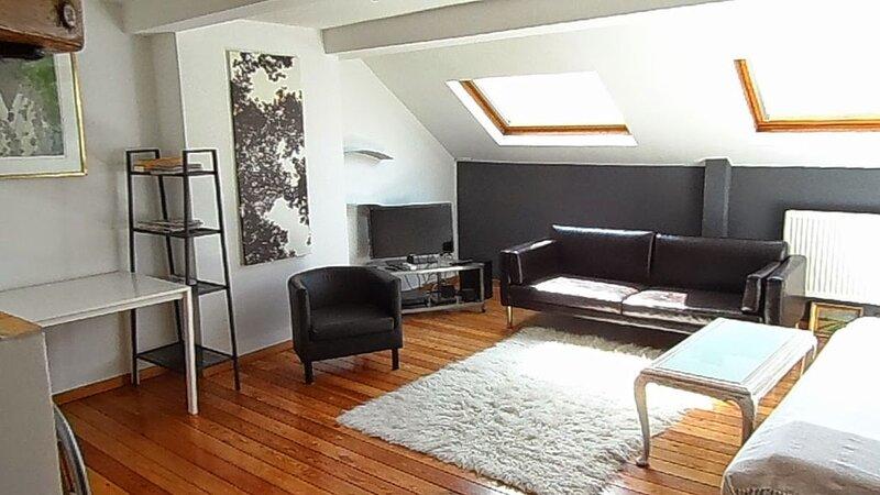 Ixelles Louise Flagey Cosy Duplex On spot La Rose., location de vacances à Ixelles