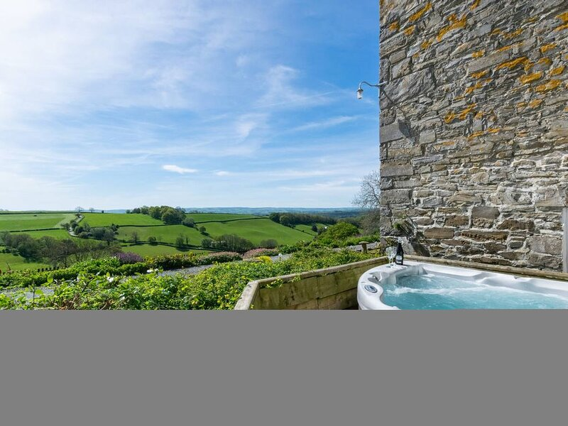 Romantic cottage in beautiful Mid Wales countryside. Just a few miles from the p, holiday rental in Cyfronydd