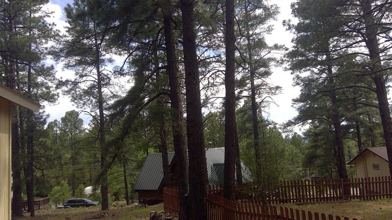 Charming 2Br 2Ba cabin with big windows in the tall pines., casa vacanza a Flagstaff