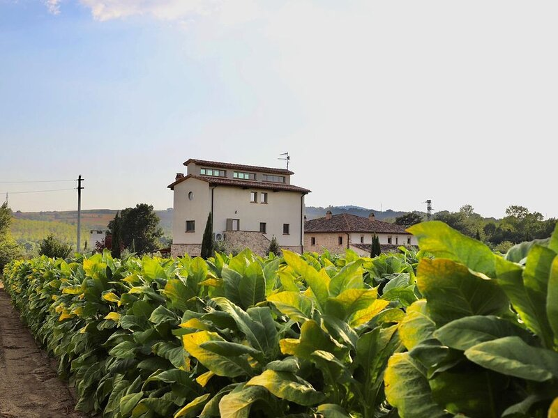 L'Essiccatoio - Ground floor, holiday rental in Marsciano