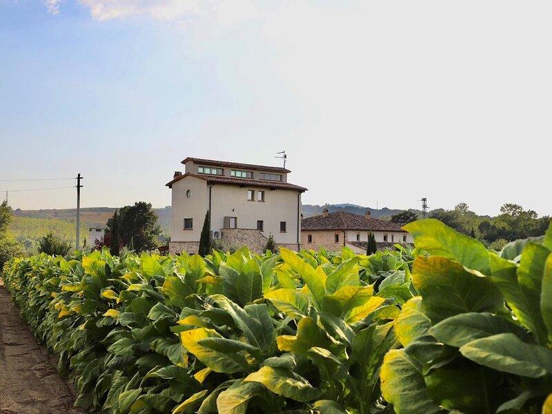 L'Essiccatoio - Ground floor, location de vacances à Mercatello
