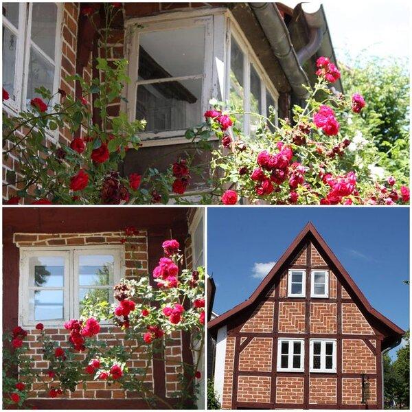 Wohnen mitten im schönsten Viertel von Lüneburg, alquiler de vacaciones en Bleckede