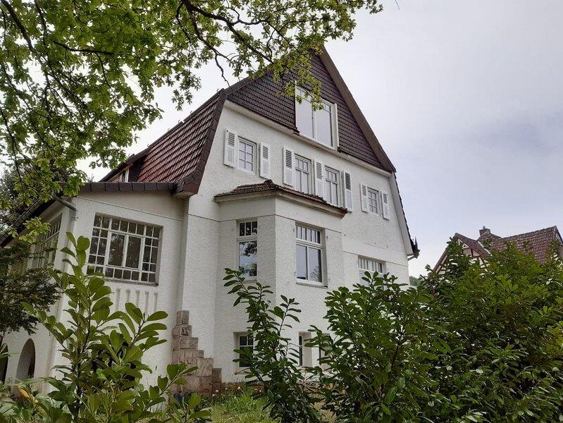 Villa am See   -   design lake view  -  Zicht op het meer - neu & voll renoviert, location de vacances à Walkenried