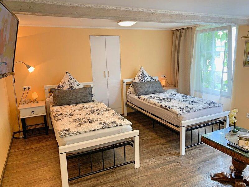 Fewo zur goldenen TraubeI Gelbe Wohnung I Zentral Rüdesheimer Altstadt I Wifi, Ferienwohnung in Grolsheim