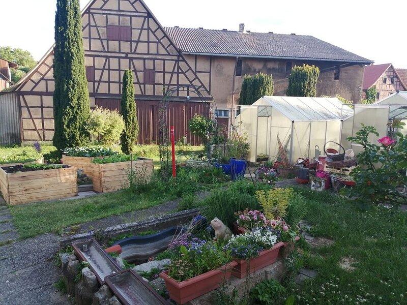 Neue Ferienwohnung nähe Rothenburg o.d.T ,für 1- 6 Personen, holiday rental in Kirchberg an der Jagst