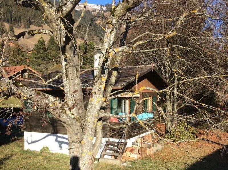 Ferienhaus Rougemont für 3 - 4 Personen mit 2 Schlafzimmern - Ferienhaus, vacation rental in Chateau-d'Oex