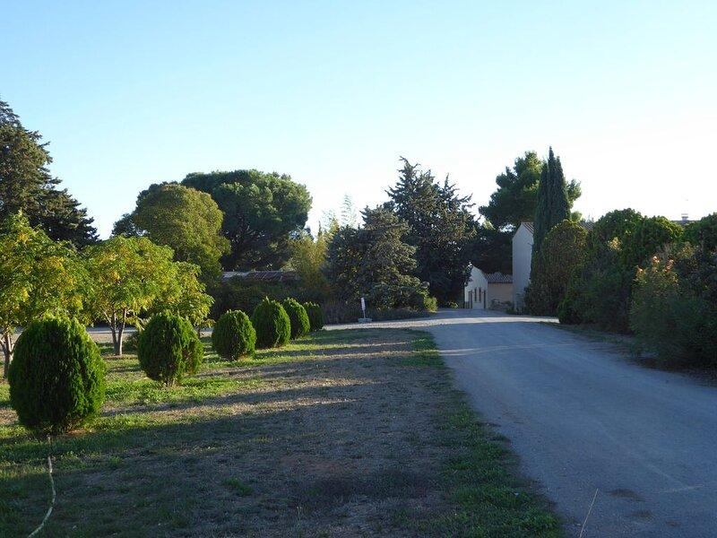 GITE ARTEMISIA Domaine de l'Herbe Sainte Vignoble Meublé Confortable accès PMR, holiday rental in Saint-Marcel-sur-Aude