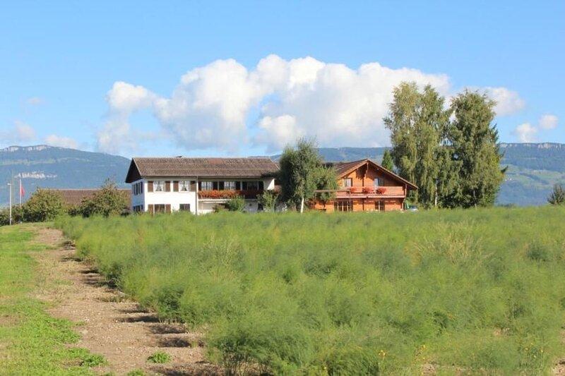 Ferienwohnung Subingen für 4 Personen mit 2 Schlafzimmern - Ferienwohnung in Bau, vacation rental in Wangenried