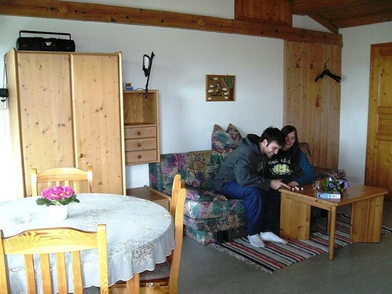 32qm große 1-Zimmerwohnung mit Balkon, location de vacances à Waldthurn