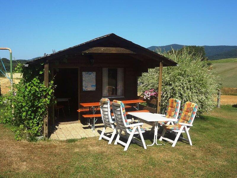 90qm-große Ferienwohnung mit Balkon und großer Terrasse, holiday rental in Spiegelau