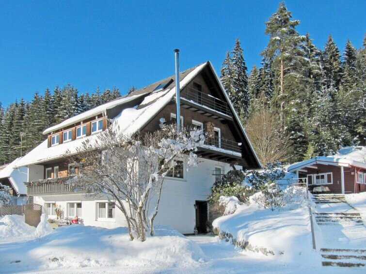 Apartment Haus Ganter  in Hinterzarten, Black Forest - 4 persons, 2 bedrooms, casa vacanza a Saig