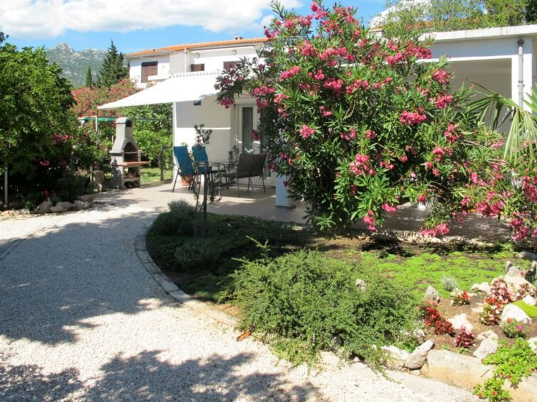 Vacation home Haus Katarina  in Rovanjswa - Jasenice, Dalmatia - 4 persons, 1 b, vacation rental in Rovanjska