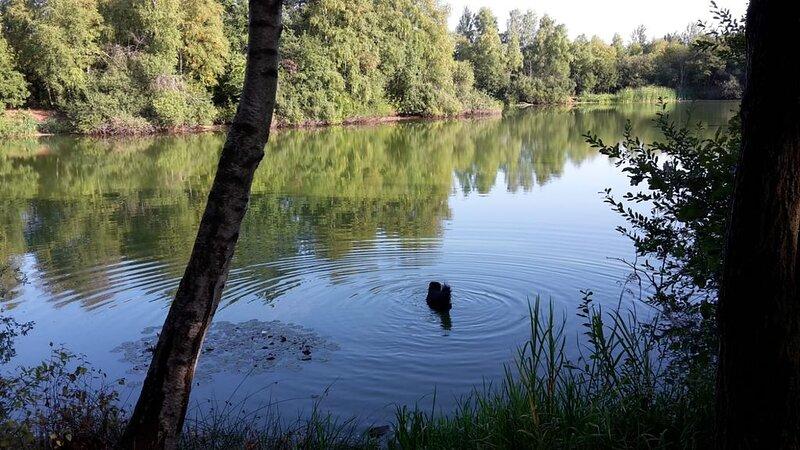 Das Heidenest im Weiten Land, location de vacances à Undeloh