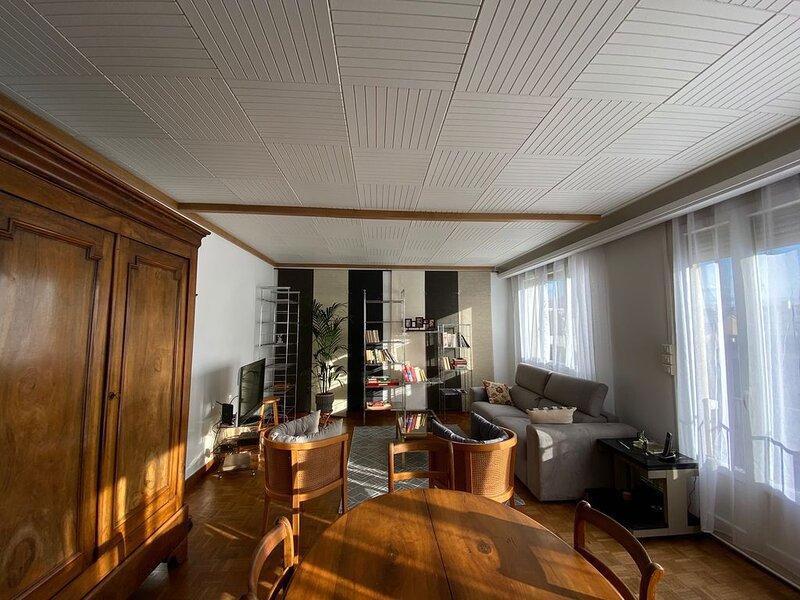 Sublime Appartement   Place St Joseph 800m du  Centre ville, vacation rental in Genlis