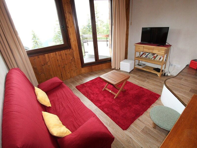 Grand studio pour 4 personnes, vacation rental in Avoriaz