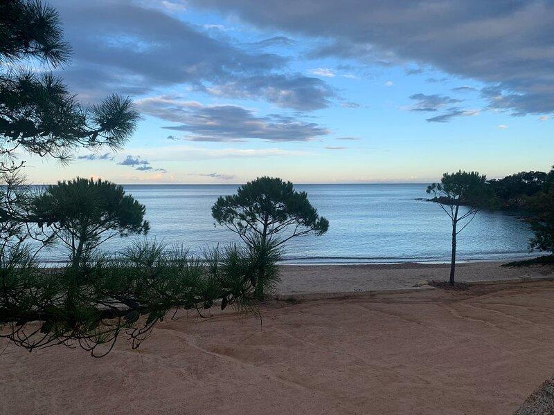 NEW   200m da la plage  appartement avec terrasse, holiday rental in Pinarellu