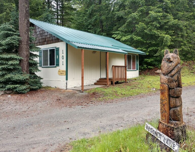 Beautiful Northwest Lodging - Hall Creek Cabin (Affordable Ski Cabin), holiday rental in Packwood