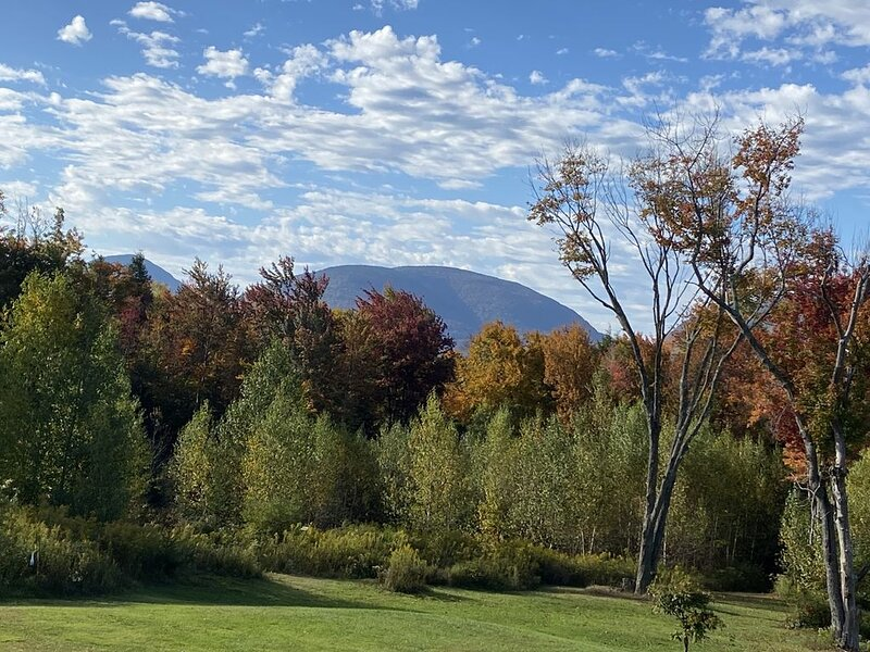 Cozy mountain retreat, perfect Catskills getaway, alquiler vacacional en Palenville