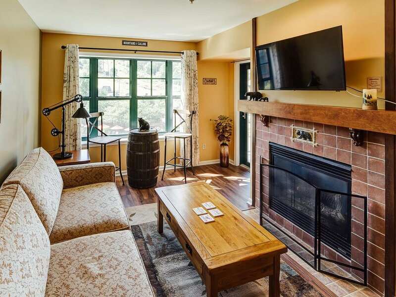 Bear Creek-#24 - Mountain Front-Skiing-Hiking-Wineries-WiFi-50 miles from NYC, vacation rental in Johnson