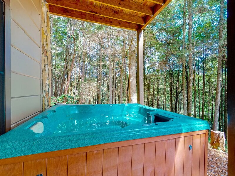 Waterfront, dog-friendly cabin next to trails w/ private hot tub & foosball!, vacation rental in Epworth