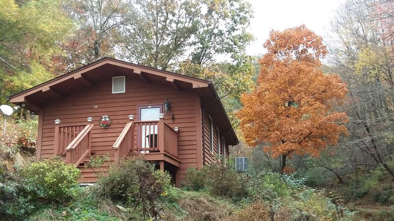 Scenic cabin near Hungry Mother, Mount Rogers, and Grayson Highlands Parks, holiday rental in Glade Spring
