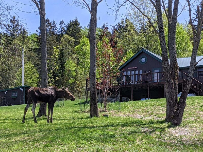 Lodge at Moosehead Lake, location de vacances à Rockwood