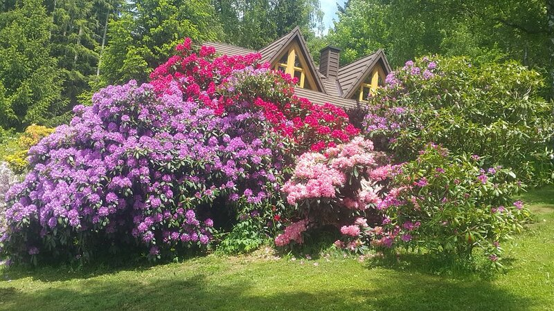 Chalet Bellevue Rogla, location de vacances à Smarje Pri Jelsah