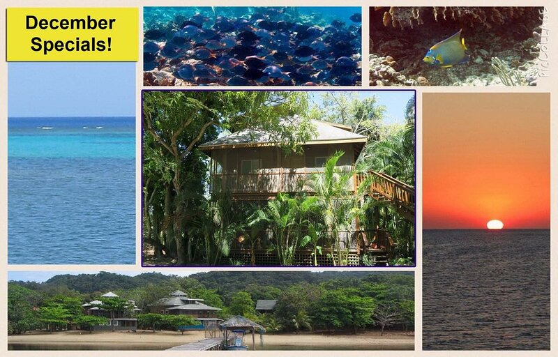 Two Bedroom Cabana, Close To Some Of The Best Snorkeling In The Caribbean, Ferienwohnung in Sandy Bay