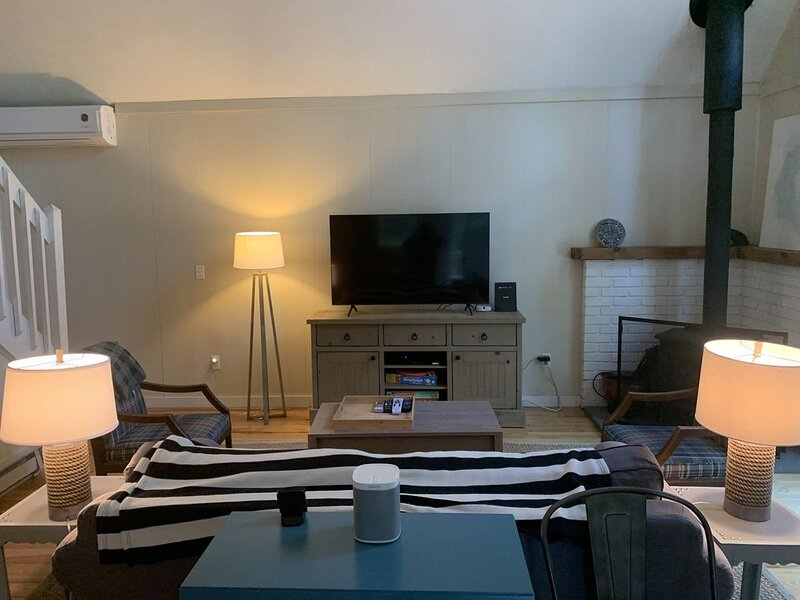 Fresh bright Lakefront Cottage, Close to SKI/TUBE, Winter hikes and Fun, vacation rental in Lehman