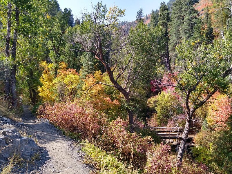 Excellent lake and mountain fun in Utah's autumn playground!, location de vacances à Huntsville